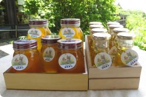 ハチミツ サイズは3種類