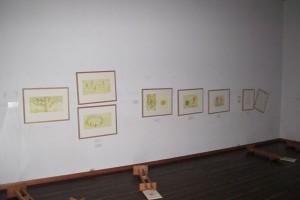 展示壁面の額
