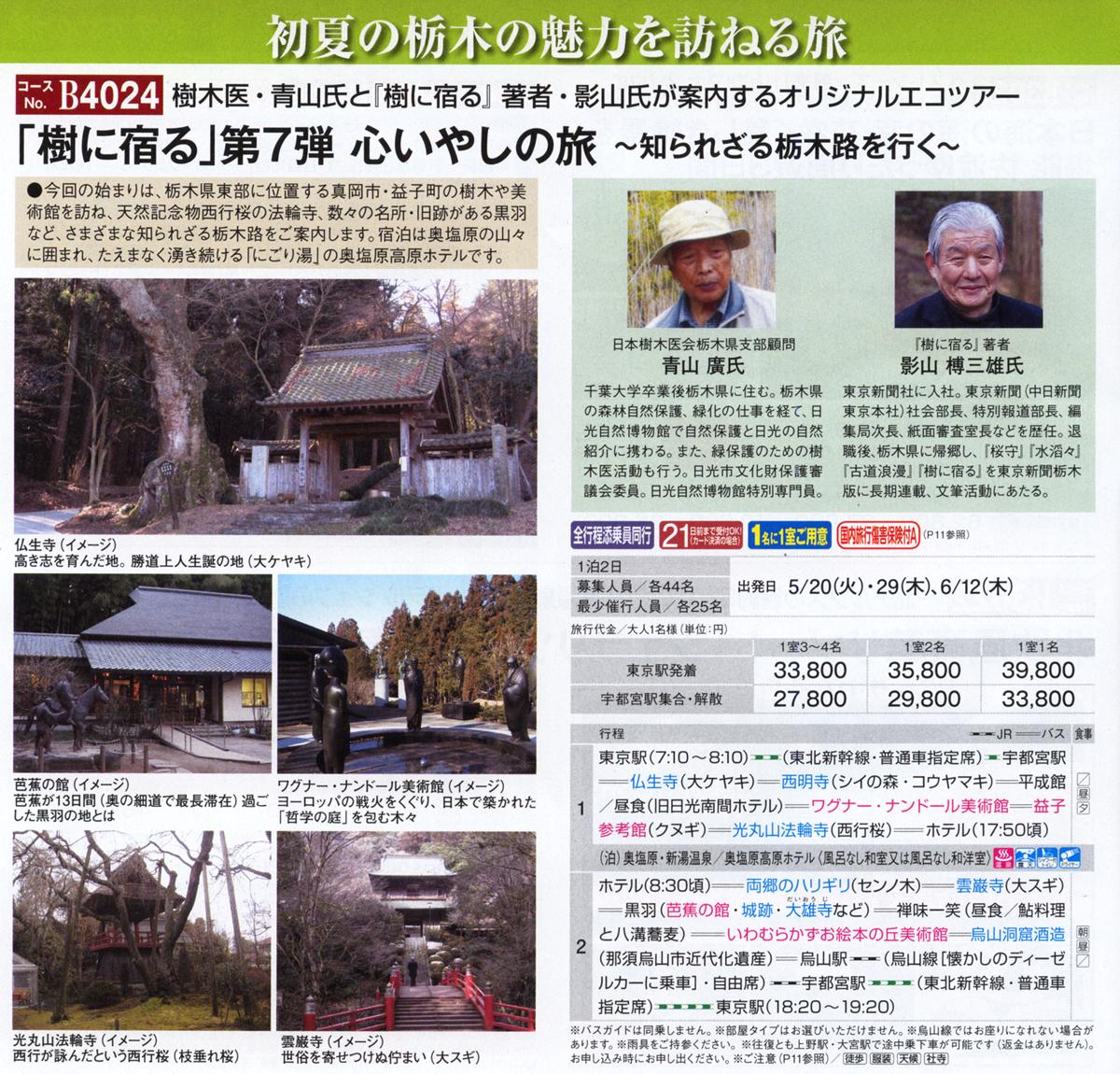 2014JR東日本樹に宿る第7弾心いやしの旅